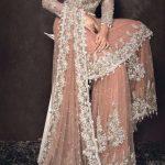 fancy Mehndi Dresses in Jamawar