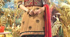 Mehndi Dresses Punjabi Suit brown Colour
