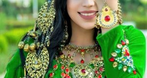 Traditional Fancy Kashmiri Dress Embroidery